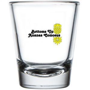 The Upsidedown Pineapple Bottoms Up Shot Glass